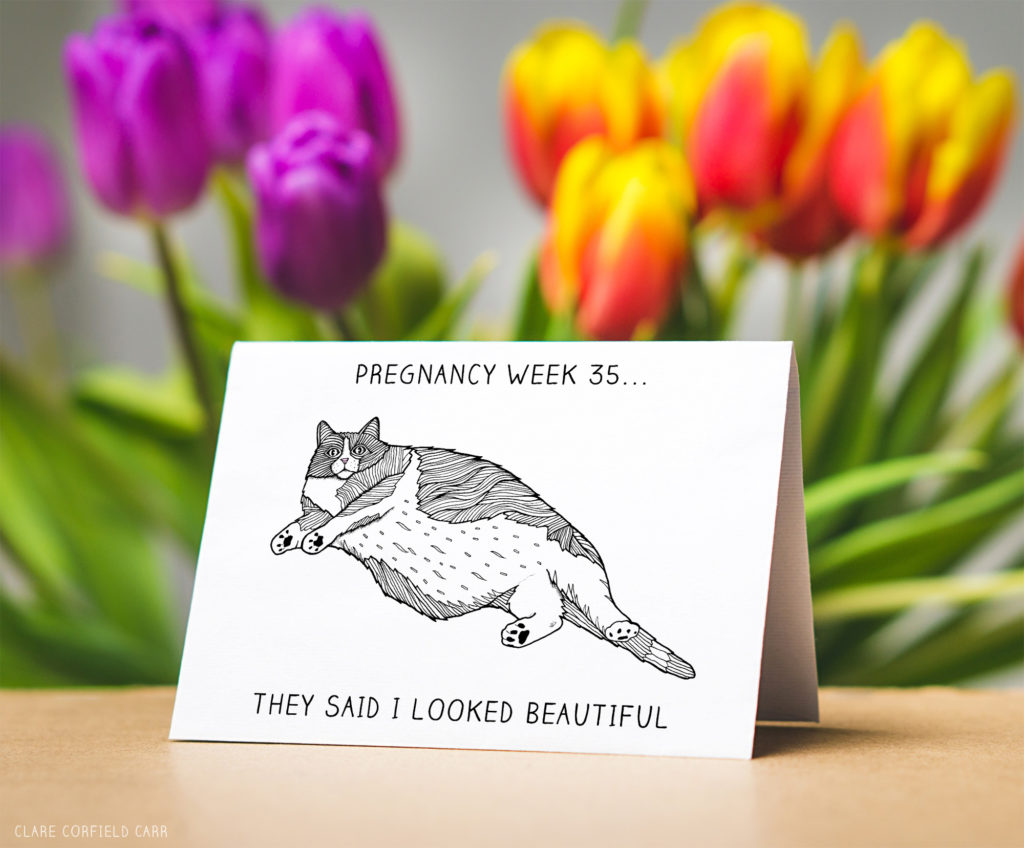 funny pregnancy cat card pregnancy meme