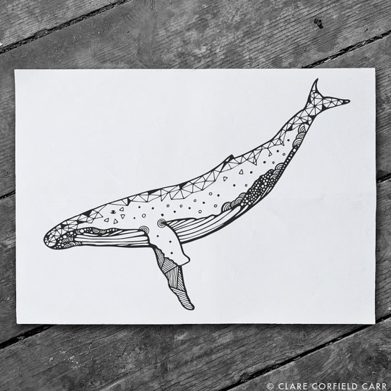 clare corfield carr whale print art illustration drawing geometric