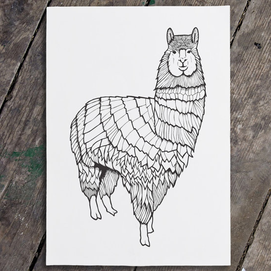 clare corfield carr llama art print illustration drawing cute